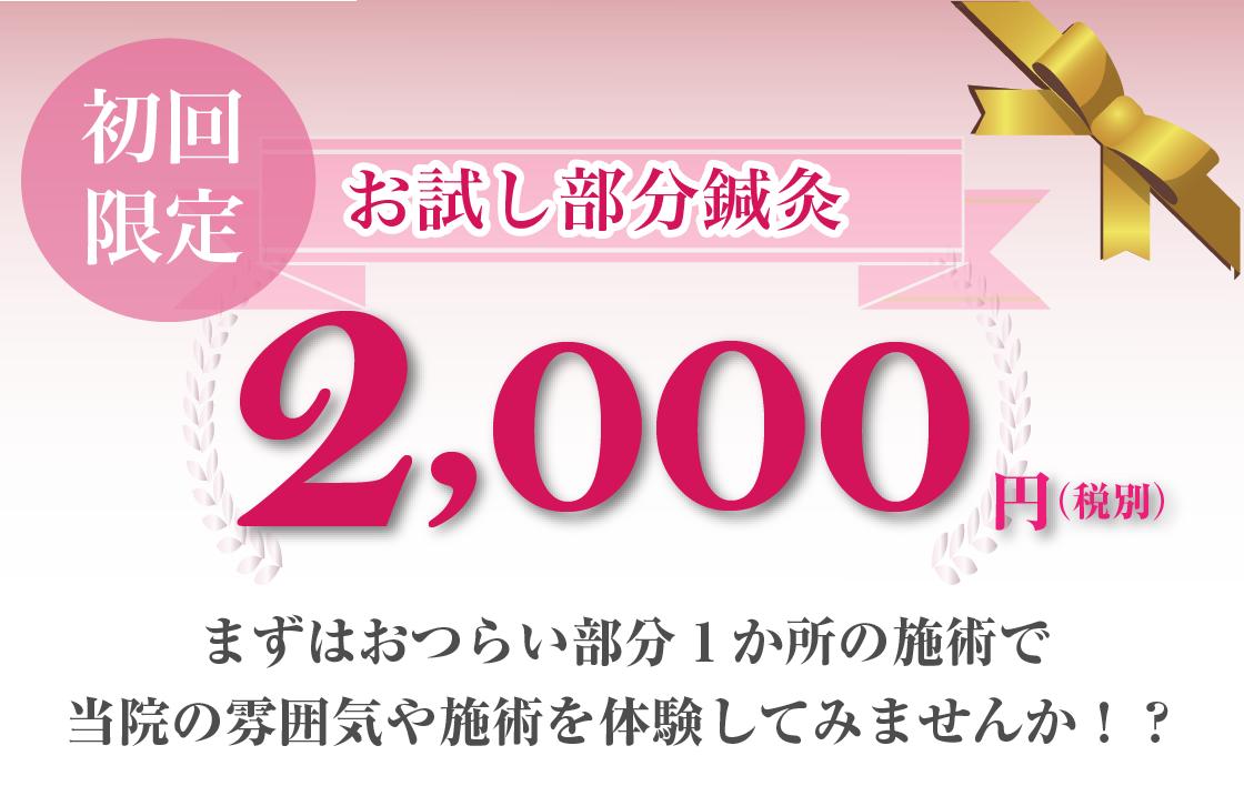 初回お試し部分鍼灸は2,000円(税別)です|鎌ヶ谷市(新鎌ヶ谷)