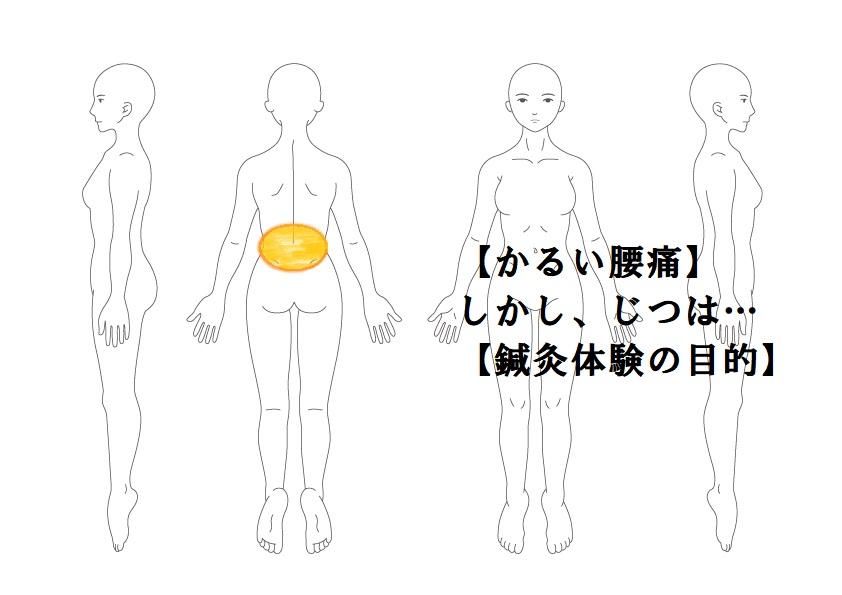 その他症例2:腰痛・お試し|鎌ヶ谷市(新鎌ヶ谷)の鍼灸院