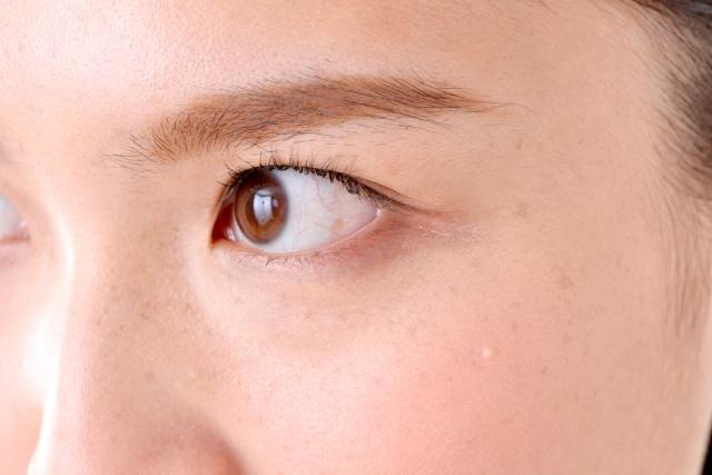 緑内障患者の眼球血流に鍼|鎌ヶ谷市(新鎌ヶ谷)の鍼灸院